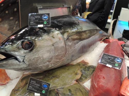 Félreértések és tévedések a tonhallal kapcsolatban